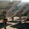 Orange Grove Irrigation (Tustin)